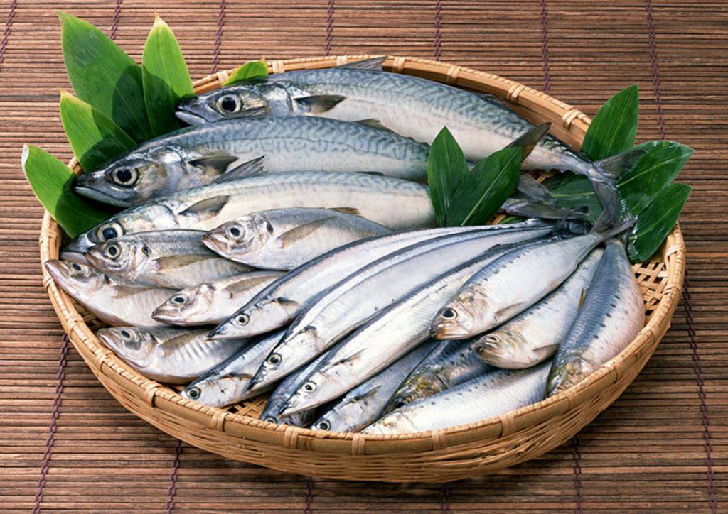 Фото: рыболовство в Херсонесе в Римский период